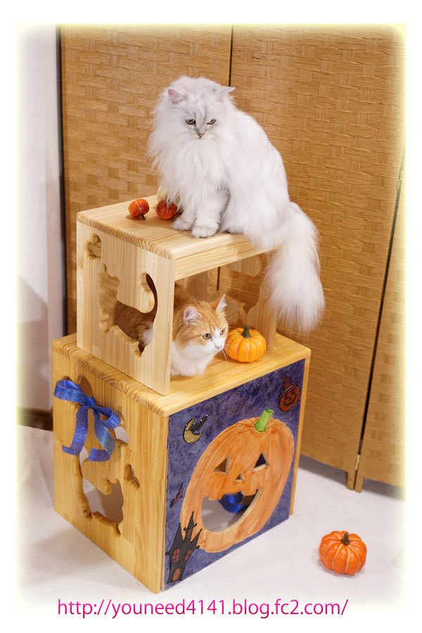 HalloweenWakuNasi001.jpg